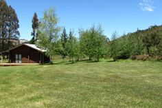 Triple Tui - Log cabin, self contained, river side in Murchison, Nelson-Golden Bay   Bookabach