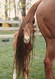 Wauw wat heb ik toch mooie haren haha