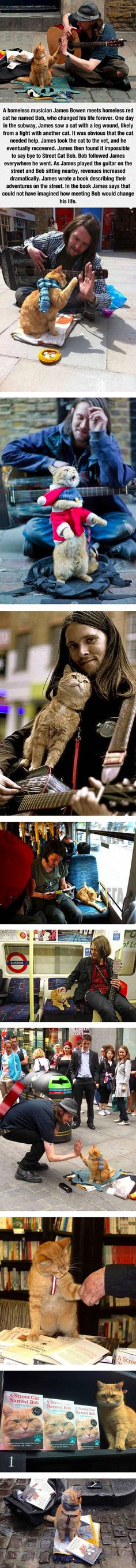 Homeless musician and his cat.