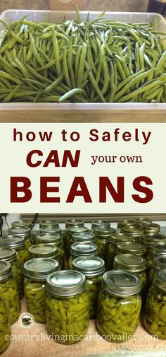 How to Can Green Beans - Pressure Canning - Country Living in a Cariboo Valley Preserve your own beans this year. Here is how to safely home can your own beans and vegetables. Home Canning Recipes, Canning Tips, Pressure Canning Recipes, Pressure Cooking, Garden Canning Ideas, Pressure Canning Green Beans, Canning Beans, Canning Food Preservation, Preserving Food