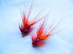 Orange magenta shrimps By Graeme Ried