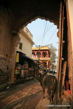 Bundi India pictures Rajasthan -