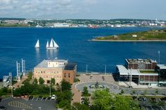"""The view from my room at the Westin Nova Scotian, overlooking Pier 21."""