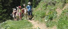 Enjoy a Hiking Holiday in Jackson Hole All Inclusive Trips, Jackson Hole, Trekking, Trip Advisor, Sons, Hiking, Activities, Explore, Holiday