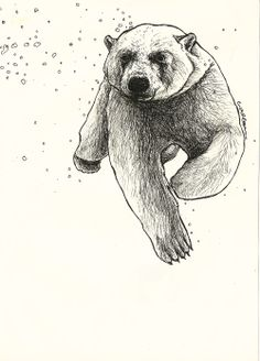 Swimming Polar Bear illustration