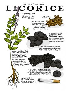 How to Actually Harness the Benefits of Licorice Root? #NaturalCleanse, #BodyDetox,
