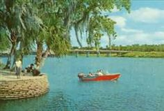 I'm guessing this is Hontoon Island State Park, on the St. Johns River, near DeLand FL.