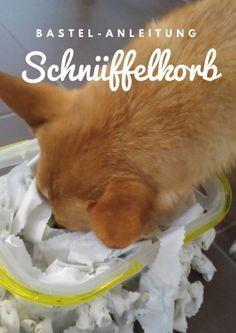 Ein Schnüffelkorb für den Hund ganz leicht aus Stoffresten herstellen