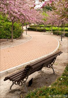 'Parque de La Paloma' in the Spring. Benalmadena Spain, Places To See, Places Ive Been, Spain Culture, Holiday Resort, Balearic Islands, Andalusia, Malaga, Morocco