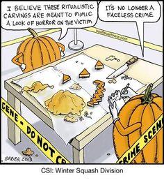 Wacky Wednesday: CSI: Winter Squash Division