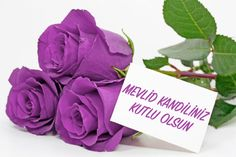The birthday of our Prophet Mevlid Kandili was held on the night of 11 December – Tesettür Good Morning Massage, Good Morning Love, Good Morning Friends, Good Morning Images, Good Morning Quotes, Beautiful Profile Pictures, Roses Gif, Beautiful Monday, Monday Blessings