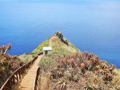 Ponta do Garajau, Madeira