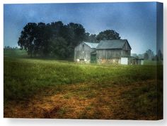 Morning Chores by Garvin Hunter on Farm Art, Natural World, Online Art Gallery, Paths, Canvas Wall Art, Cool Photos, In This Moment, Explore, Art Prints