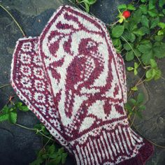 This listing is for a PDF knitting pattern, not for a finished knitted item!! This nature-inspired pattern is recommended for intermediate-level knitters who have experience with stranding and working from charts. Size: Women's medium Yarn: Fingering or sock weight yarn in two