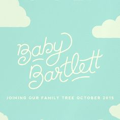 Baby Bartlett! Watch are animated baby announcement video on our blog!