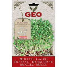 Oferta: 3.58€. Comprar Ofertas de Geo Brécol - Semillas para germinar, 12.7 x 0.7 x 20 cm, color marrón barato. ¡Mira las ofertas!