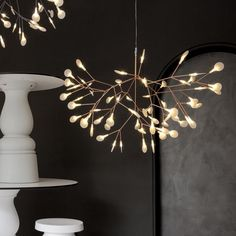 Moooi Heracleum II Pendant Light - Olighting