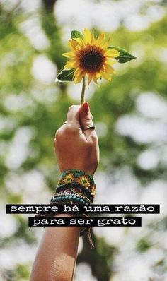 Start The Day Quotes, Quote Of The Day, Portuguese Quotes, Magic Words, Insta Story, New Years Eve Party, Good Vibes, Wallpaper Quotes, Reiki