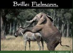 lustiges Bild 'Brille - Fielmann.jpg'- Eine von 21164 Dateien in der Kategorie 'witzige Bilder' auf FUNPOT.