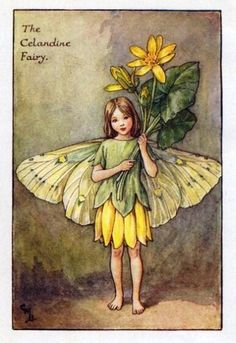 Celandine Flower Fairy » Flower Fairy Prints- Vintage Fairy Prints by Cicely Mary Barker for sale
