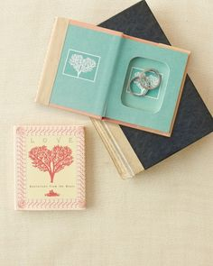 Novel Ring Book If yours feels like a classic romance, fashion your favorite piece of literature or collection of poems into a hidey-hole for your rings. Once you're wed, store your valuables inside and set it on a bookshelf, and no one will be the wiser. Wedding Ring Box, Diy Wedding, Wedding Bands, Dream Wedding, Wedding Ideas, Wedding Photos, Bali Wedding, Wedding Themes, Ring Bearer Pillows