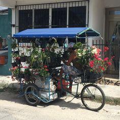 Street life in San Miguel, Cozumel