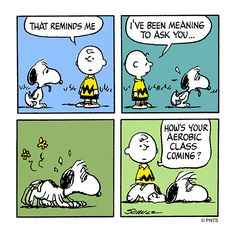 Checking in on Snoopy.