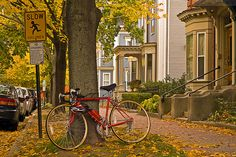 Portland, Maine USA photo by Corey Templeton of Red Bicycle and Yellow Fall Foliage on Deering Street from October Travel Around The World, Around The Worlds, Maine Real Estate, Landscape Curbing, Casco Bay, Portland Maine, Exotic Places, Daily Photo, Travel Abroad