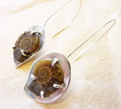 Ammonite fossils and sterling silver. Such an original design. Beautiful and organic.