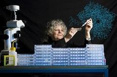 Israel's scientist Prof. Ada E. Yonath was awarded the 2009 Nobel Prize in Chemistry, along with Venkatraman Ramakrishnan und Thomas A. Steitz from the United States, for her studies of the structure and function of the ribosome, a part of the cell that synthesizes protein and translates genetic code in the production of protein.