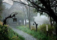 iStock_Japanese_temple_garden_black_lanterns_mystical_path.364214436.jpg (414×290)