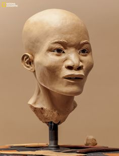"You're looking at the face of one of the first Americans. Meet ""Naia."" She is around 13,000 years old. click on image to read more."