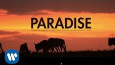 Coldplay - Paradise -