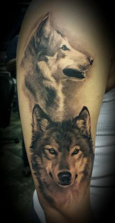 Watercolor portrait of two of wolves tattoo on shoulder