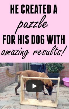 This dog puzzle is genius... and so easy to create!