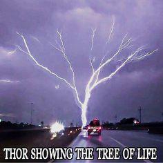 Hail the mighty Thor Viking Life, Viking Warrior, Viking Woman, Viking Symbols, Viking Runes, Mayan Symbols, Egyptian Symbols, Ancient Symbols, Norse Pagan