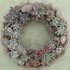 Succulent Floral Arts by Linda Estrin Garden Design, Agoura Hills, CA