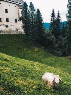 Urlaub im Salzburgerland: Der UNESCO Biosphärenpark Lungau - unsere Highlights & Tipps, von Brotbacken bis Kneippwandern Park, Highlights, Travel Report, Places, Destinations, Viajes, Tips, Parks, Luminizer