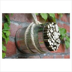 Bundle sticks and twigs in a can and hang in the garden for nesting and hibernating insects