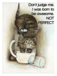 Don't judge me. I was born to be awesome, not perfect