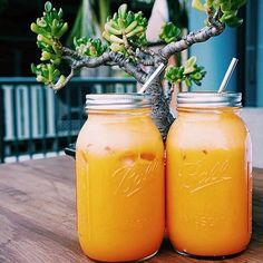 Hydrate Yo Self :: Delicious Smoothies :: Fruit & Vegetable Juicing :: Recipes for Health :: Detox + Diet juices :: See more Untamed Hydration Inspiration @untamedorganica