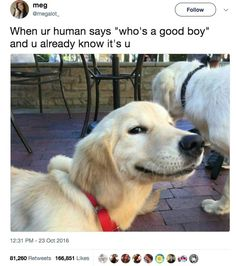 Especially the internet. There are so many good boys everywhere you look.