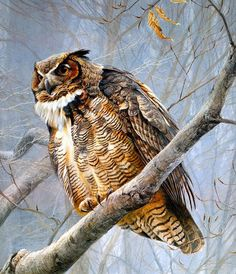 As Cores Da Arte: Robert Bateman .  My desire in life is to someday paint 1/2 as good as this man!