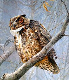 9-23-14 Wildlife Artist of the Day: Robert Bateman