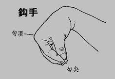 Gou Shou (Taiji Quan) Holding a Pearl or Forming a Bird's Beak Learn Tai Chi, Marshal Arts, Tai Chi Qigong, Chinese Martial Arts, Qi Gong, Taoism, Traditional Chinese Medicine, Wing Chun, Yin Yang