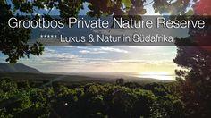 Grootbos Private Nature Reserve - zwei Tage voller Luxus, unberührter Natur und überwältigender Abenteuer.