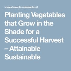 Planting Vegetables that Grow in the Shade for a Successful Harvest – Attainable Sustainable
