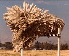 Do you know what this is? You don't, do you? No, you couldn't possibly. Keep looking. Do you know yet? Look close. It's a picture of a dog jumping. Yes, really. Look close where you think it ought to be, and you'll see his nose. It's a Komondor.