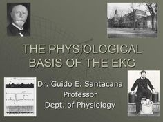 THE PHYSIOLOGICAL BASIS OF THE EKG Dr. Guido E. Santacana Professor Dept. of…