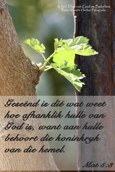 Dag 128 Bybelverse Mat Geseënd is dié wat weet hoe afhanklik hulle van God is, want aan hulle behoort die koninkryk van die hemel. Scripture Crafts, Scripture Verses, Bible Verses Quotes, Jesus Quotes, Bible Scriptures, I Love You God, Afrikaans Quotes, Choose Life, Gods Promises